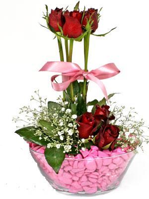 Türkiye çiçek mağazası , çiçekçi adresleri  SEVIYORUM DIYENLER 7 kirmizi gül tanzim
