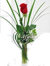 Cam içerisinde 1 kırmızı gül  Türkiye kaliteli taze ve ucuz çiçekler