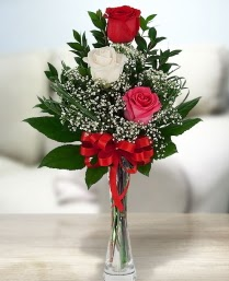 Camda 2 kırmızı 1 beyaz gül  Türkiye çiçek gönderme sitemiz güvenlidir