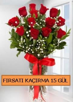 15 İthal kırmızı gül büyük başlı orjinal  Türkiye çiçekçi telefonları