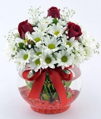 Fanusta 3 Gül ve Papatya  Türkiye çiçek satışı