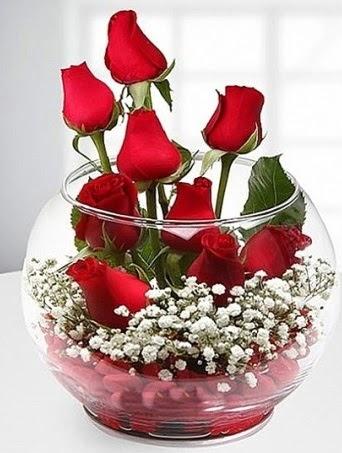 Kırmızı Mutluluk fanusta 9 kırmızı gül  Türkiye çiçekçi telefonları