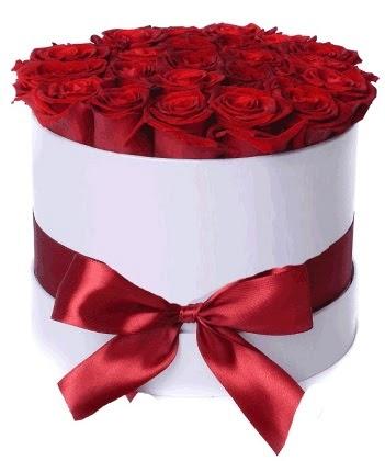 33 adet kırmızı gül özel kutuda kız isteme   Türkiye çiçek , çiçekçi , çiçekçilik