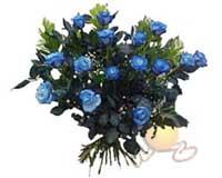 Türkiye İnternetten çiçek siparişi  11 adet mavi gül özel tanzim