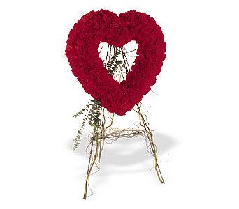 Türkiye çiçek satışı  karanfillerden kalp pano