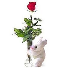 oyuncak ve gül tanzim   Türkiye hediye sevgilime hediye çiçek