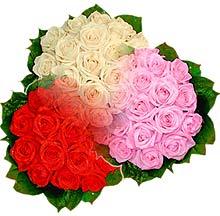 3 renkte gül seven sever   Türkiye İnternetten çiçek siparişi