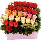 15 adet renkli gül ve cam   Türkiye çiçek gönderme