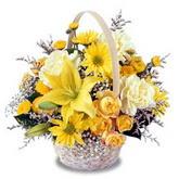 sadece sari çiçek sepeti   Türkiye kaliteli taze ve ucuz çiçekler