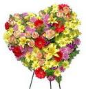 kalp biçiminde ferförje   Türkiye yurtiçi ve yurtdışı çiçek siparişi