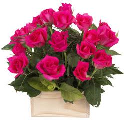 12 adet pembe güllerden sepet tanzimi  Türkiye hediye sevgilime hediye çiçek