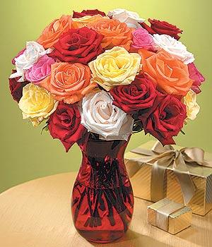 Türkiye çiçek siparişi vermek  13 adet renkli gül