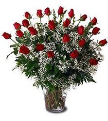 Türkiye çiçekçi telefonları  Cam yada mika vazo içerisinde 15 adet kirmizi güller,cipsofi