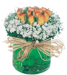 Türkiye çiçek satışı  Cam yada mika içerisinde 9 adet  gül aranjmani