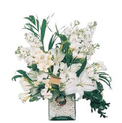Türkiye ucuz çiçek gönder  sadece beyazlardan olusmus mevsim cam yada mika tanzim