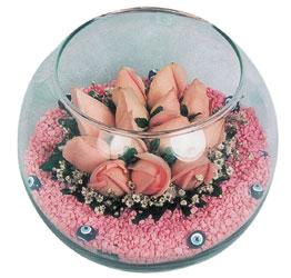 Türkiye çiçek satışı  cam fanus içerisinde 10 adet gül