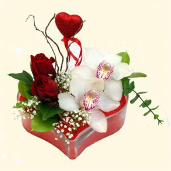 Türkiye online çiçek gönderme sipariş  1 kandil orkide 5 adet kirmizi gül mika kalp