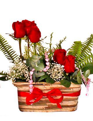 Türkiye çiçekçiler  SEVDIM DIYENLERE Örme sepet 9 adet kirmizi gül