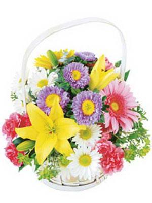 Türkiye çiçek online çiçek siparişi  Mevsim sepeti karisik mevsim çiçekleri