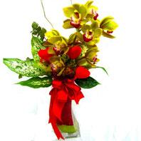Türkiye çiçekçiler  1 adet dal orkide ve cam yada mika vazo tanzim