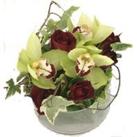 Türkiye 14 şubat sevgililer günü çiçek  1 kandil orkide ve 5 adet kirmizi gül