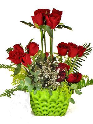 Türkiye internetten çiçek satışı  Çiçek siparisi 9 adet kirmizi gül
