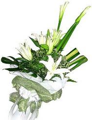 Türkiye anneler günü çiçek yolla  3 dal kazablanka çiçegi ve yesillikler