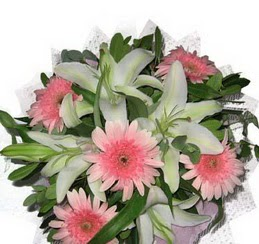 3 dal kazablanka çiçegi ve kir çiçekleri