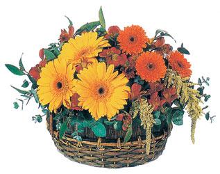 Türkiye kaliteli taze ve ucuz çiçekler  sepet içerisinde kir çiçekleri tanzimi