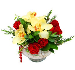 Türkiye yurtiçi ve yurtdışı çiçek siparişi  1 kandil kazablanka ve 5 adet kirmizi gül