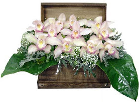 Türkiye çiçek gönderme sitemiz güvenlidir  sandik içerisinde 1 dal orkide