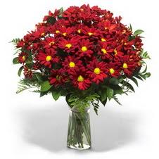 Türkiye güvenli kaliteli hızlı çiçek  Kir çiçekleri cam yada mika vazo içinde