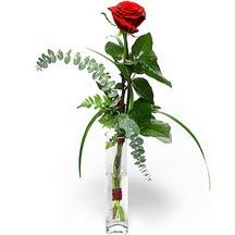 Türkiye internetten çiçek siparişi  Sana deger veriyorum bir adet gül cam yada mika vazoda