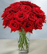Türkiye çiçekçi telefonları  Sevdiklerinize özel ürün 12 adet cam içerisinde kirmizi gül  Türkiye çiçek yolla