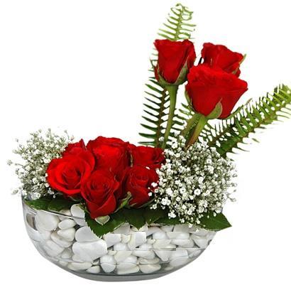 cam içerisinde 9 adet kirmizi gül  Türkiye hediye çiçek yolla
