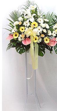 Türkiye çiçekçi mağazası   perförje çiçegi dügün çiçekleri