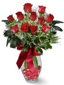 9 adet gül  Türkiye çiçek satışı  kirmizi gül