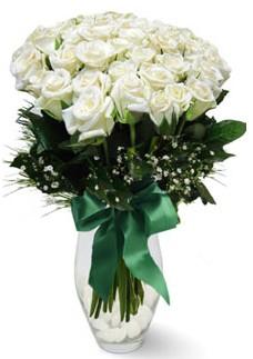 19 adet essiz kalitede beyaz gül  Türkiye çiçek , çiçekçi , çiçekçilik