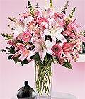 Türkiye çiçek servisi , çiçekçi adresleri  Kazablanka biçme vazoda