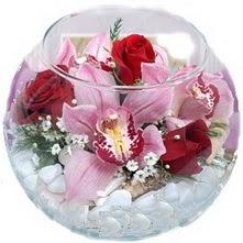Türkiye online çiçekçi , çiçek siparişi  fanus içinde 1 kandil orkide 3 gül aranjmani