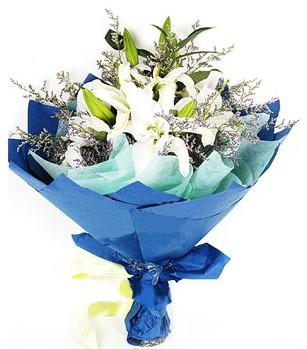 Türkiye çiçek siparişi vermek  4 adet dal kazablankadan görsel buket