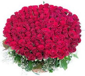 Türkiye çiçek online çiçek siparişi  100 adet kırmızı gülden görsel buket