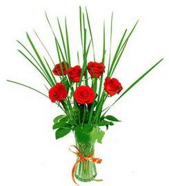 Türkiye İnternetten çiçek siparişi  6 adet kırmızı güllerden vazo çiçeği