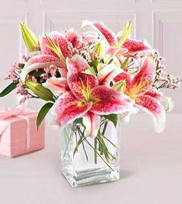 2 dal kazablanka görsel vazosu  Türkiye çiçekçi telefonları