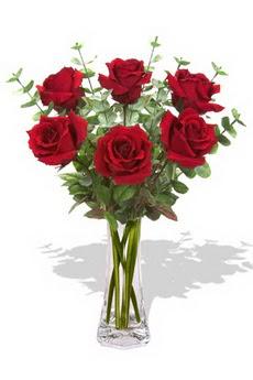 Türkiye çiçek gönderme  6 kırmızı gül vazosu