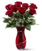 8 adet kırmızı gül sevgilime hediye  Türkiye çiçek mağazası , çiçekçi adresleri