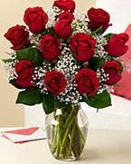 Sevgilime hediye 9 adet 1.ci kalite gül  Türkiye çiçek siparişi vermek