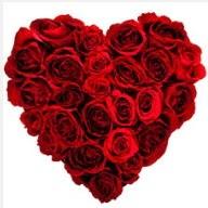 Türkiye çiçekçiler  19 adet kırmızı gülden kalp tanzimi