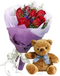7 adet kırmızı gül 15 cm boyutlarında ayıcık  Türkiye ucuz çiçek gönder