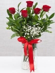 cam vazo içerisinde 5 adet kırmızı gül  Türkiye internetten çiçek satışı